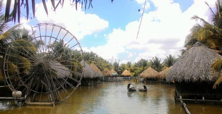Vườn sinh thái Hoa Súng (Ảnh Collection)