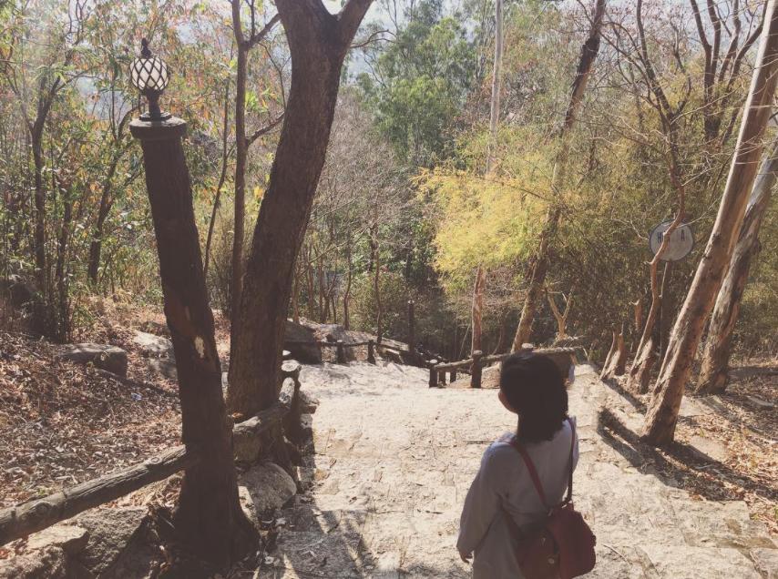 Đường lên chùa Linh Sơn Bửu Thiền Tự