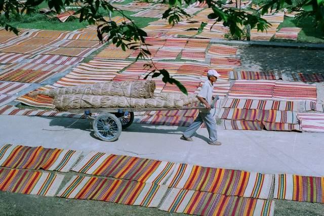Chiếu dệt xong được đem phơi cho khô hẳn trước khi đem bán (Ảnh ST)