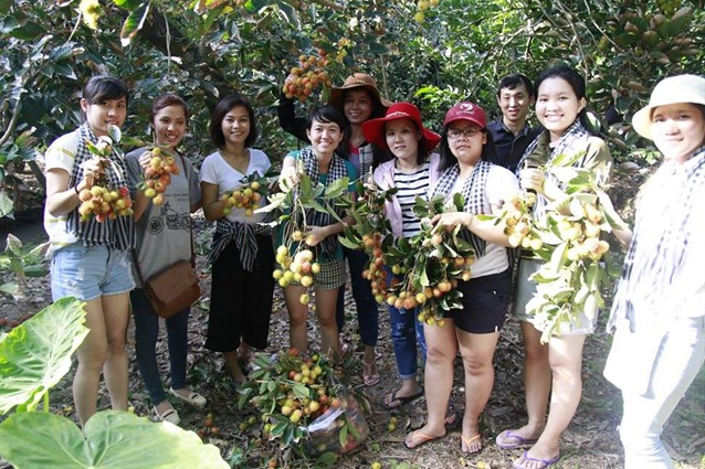 Set up a team of fruit trees in Que Ta Ben Tre